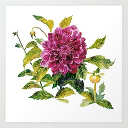 Cut Dahlia Watercolor on Wrinkled Paper Art Print