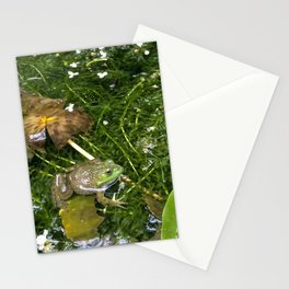 Frog in pond Stationery Cards