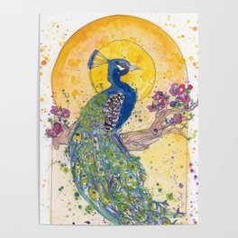 Peacock in the Sun Poster