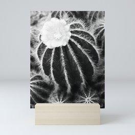 Blooming cactus Mini Art Print