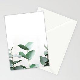 Eucalyptus 7 Stationery Cards