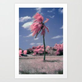 I am the Lorax - I speak for the trees Art Print