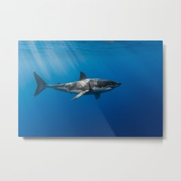 The Great White Metal Print