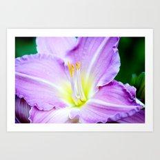 Lavender Expressed Art Print
