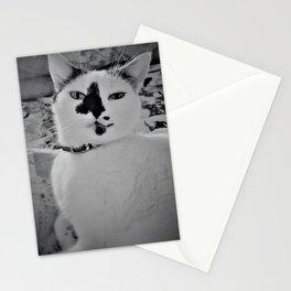 Minxy Stationery Cards
