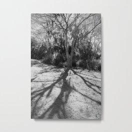 Shadow Roots Metal Print