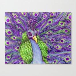 Vibrant Majestic Peacock  Canvas Print