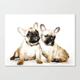 French Bulldogs Canvas Print