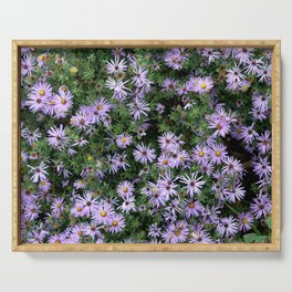 Fall Asters Serving Tray