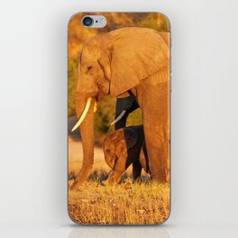 Elephants in the evening light - Africa wildlife iPhone Skin