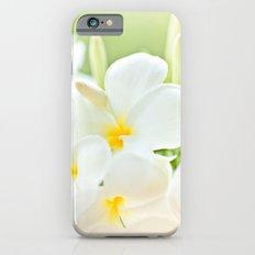White Plumeria 2 iPhone 6s Slim Case