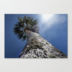 Reaching To The Sun Canvas Print
