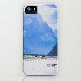 Goat Series, II iPhone Case