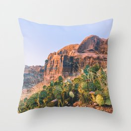 Canyon Life Throw Pillow