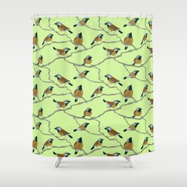 Black-Throated Finches Shower Curtain
