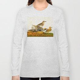 Black-bellied Plover Bird Long Sleeve T-shirt