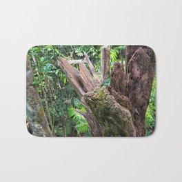A cyclone damaged tree in the rain forest Bath Mat