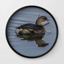 Immature Pied-billed Grebe Wall Clock