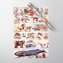 Vintage Antique Wildlife Encyclopedia Print Wrapping Paper