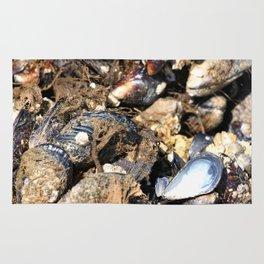 Mussels Rug