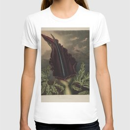 The Dragon Arum Temple of Flora T-shirt