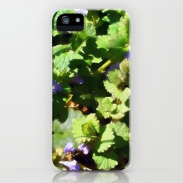 Ground Ivy 06 iPhone Case