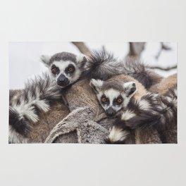 Lemur catta animals Rug