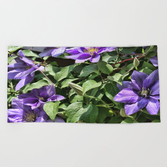 Clematis Flowers and Vines Beach Towel