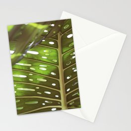 Tropic Light Stationery Cards