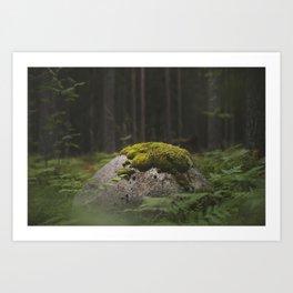 Rock in the woods Art Print