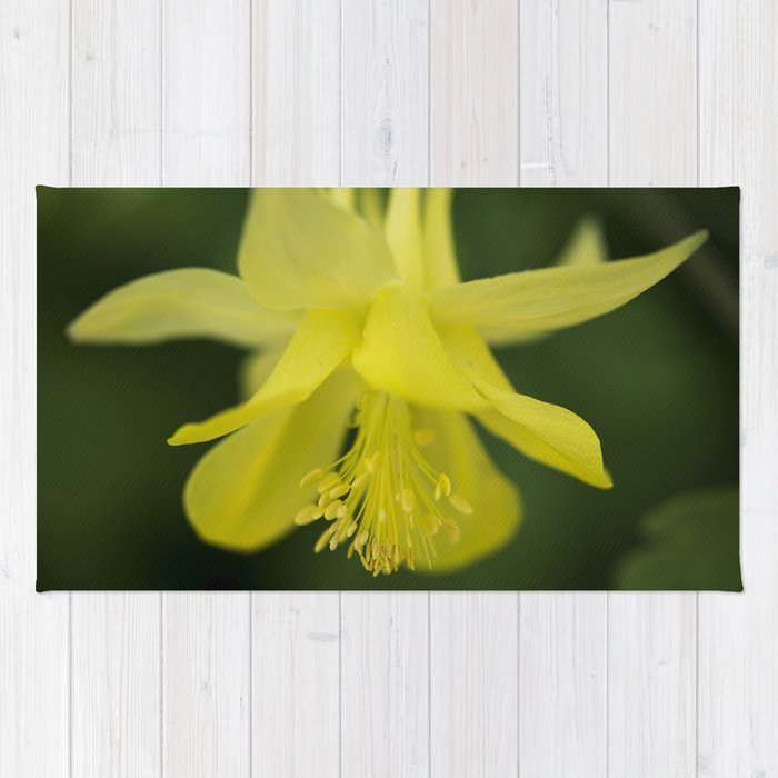 Golden Spur Columbine Alternate Perspective Rug