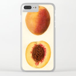 Vintage Illustration of a Sliced Peach Clear iPhone Case