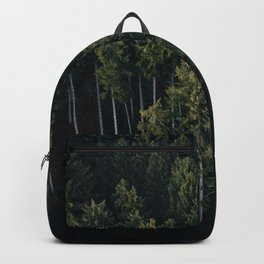 Aerial Photograph of a pine forest in Germany - Landscape Photography Backpack