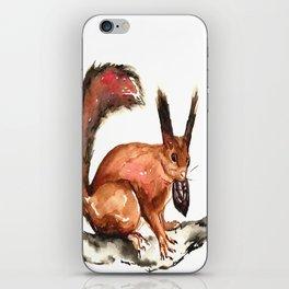 Eurasian Red Squirrel iPhone Skin