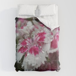 Dewy Dianthus Comforters