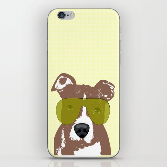 American Pit Bull Terrier iPhone & iPod Skin