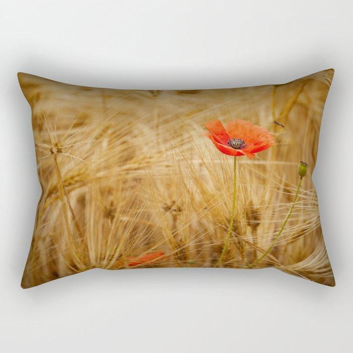 Beautiful poppy in a field - Poppies Summer Rectangular Pillow