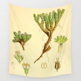 Vintage Botanical illustration, 1844 (Succulent) Wall Tapestry