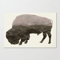 bison Canvas Prints featuring Bison by Outdoor Bro