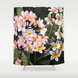 Hawaiian Pink Plumeria Blossoms Shower Curtain