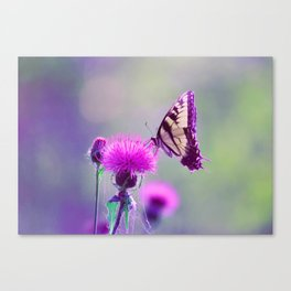 "Tiger Swallowtail ""Bokeh"" Canvas Print"