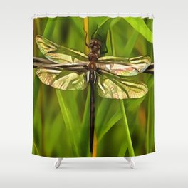 Dragonfly In Brown And Yellow Shower Curtain