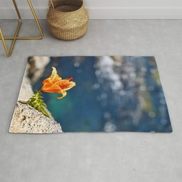 Beauty by the Waters Rug