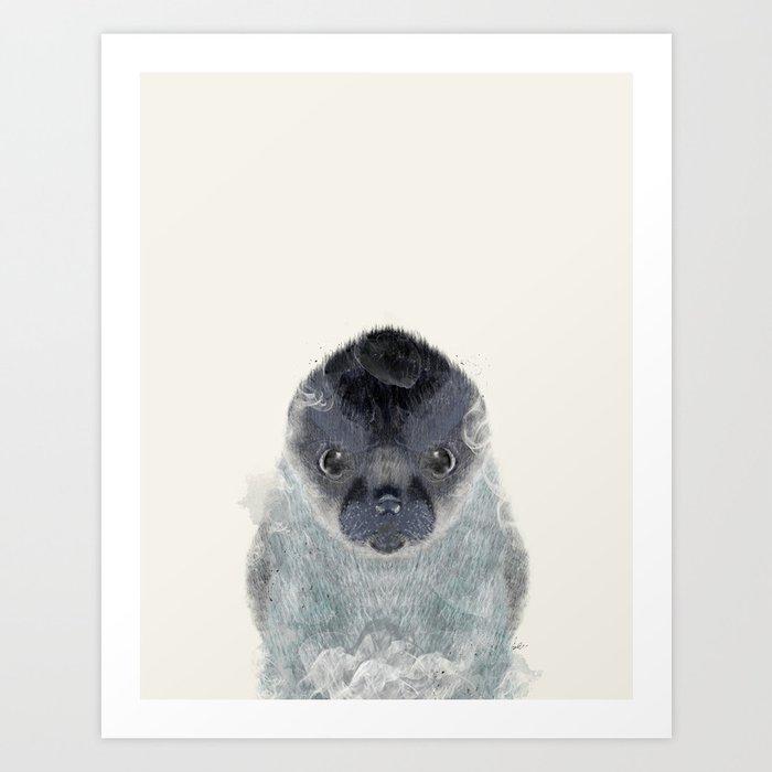little seal Art Print