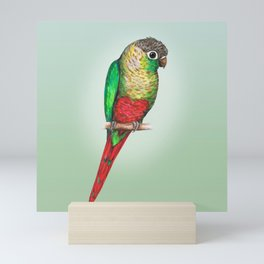 Conure with a heart on its belly Mini Art Print