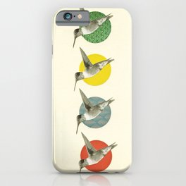 The Hummingbird Dance iPhone Case