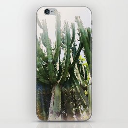 Cactus Desert Photography iPhone Skin