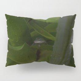 Curious Lizard Pillow Sham