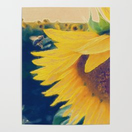 sunflower and little bee Poster