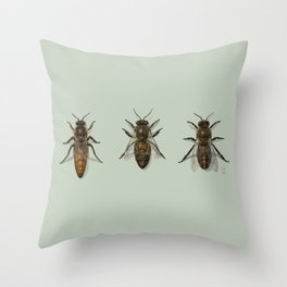 Honey Bee Family Throw Pillow